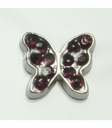 Charm vlinder paars