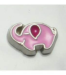 Charm olifant