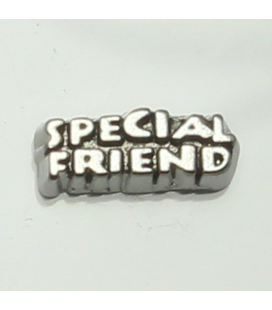 Charm 'Special friend'